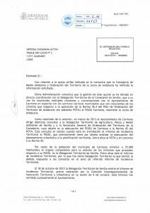 Carmona_Página_1